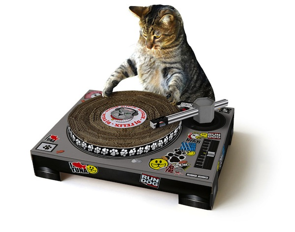 Cat DJ Scratching Toy Eerily Mimics Esoteric Musical Instrument