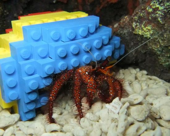 Lego Hermit Crab Shell