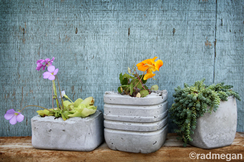 How-To: Molded Concrete Planters
