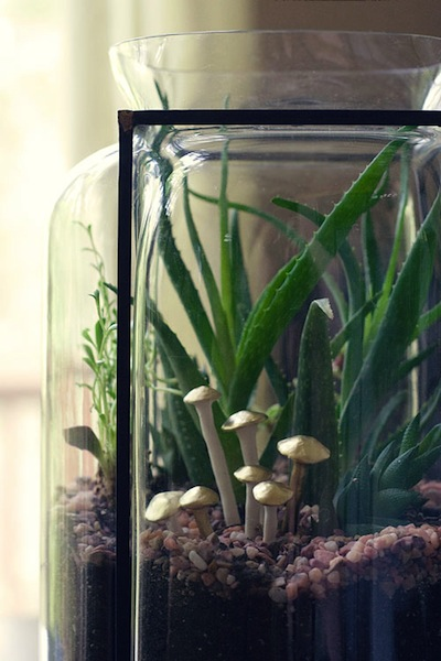 How-To: Polymer Clay Terrarium Mushrooms