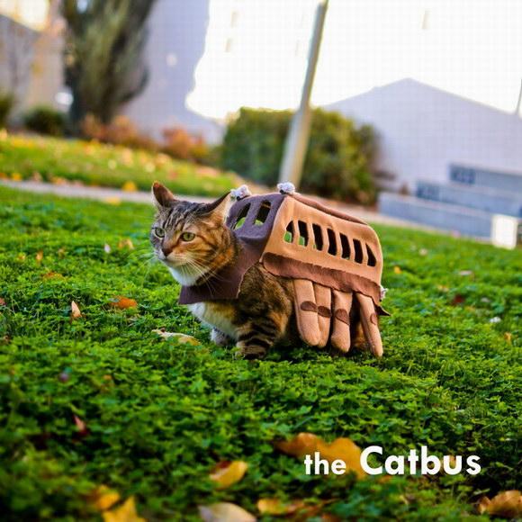 Catbus Cat Costume