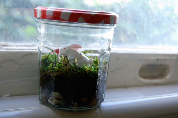 Mason Jar Terrarium Make