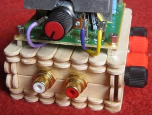 I love the look of the wood paired with the electronics. The two gold-plated RCA inputs are for an iPod, iPad, or other device. The speaker terminals can be seen on the right.