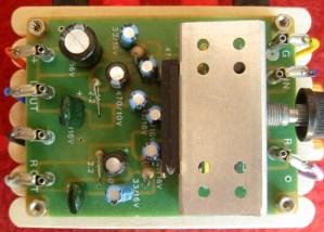 Ian used a cheap, generic 8-watt amplifier board to power his build.