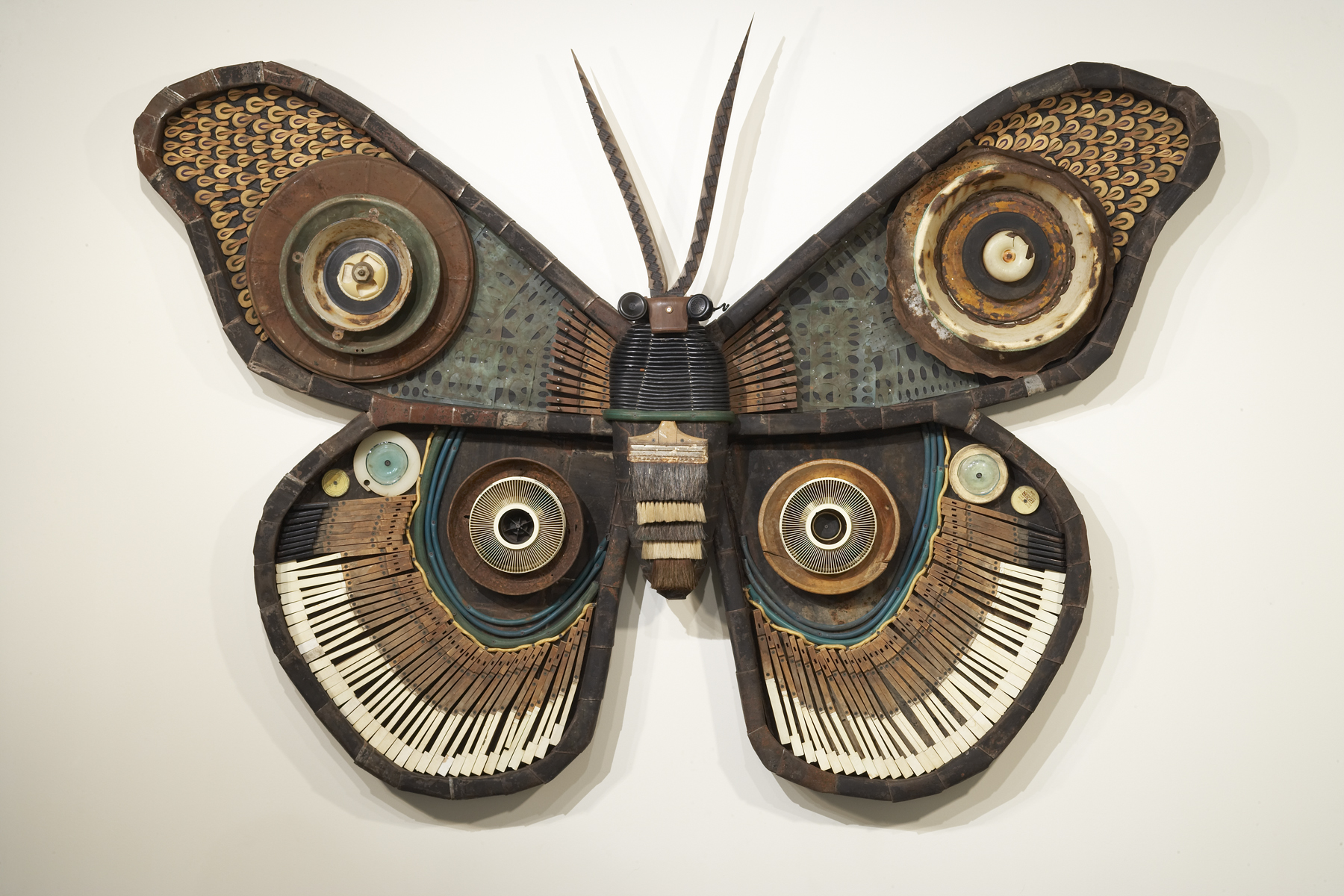 Made On Earth — Magical Moths