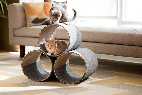 How-To: Modern Cat Condo
