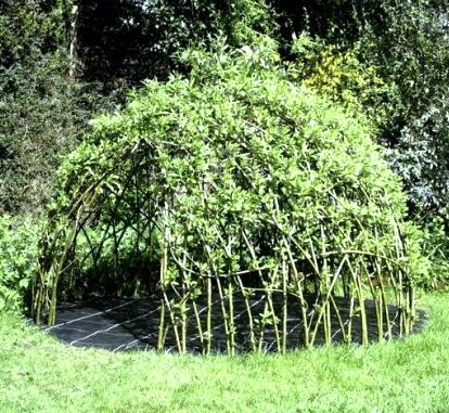 How-To: Living Willow Playhouse