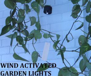 Garden lights that sparkle when the wind blows. The stronger the wind blows, the more they light up.