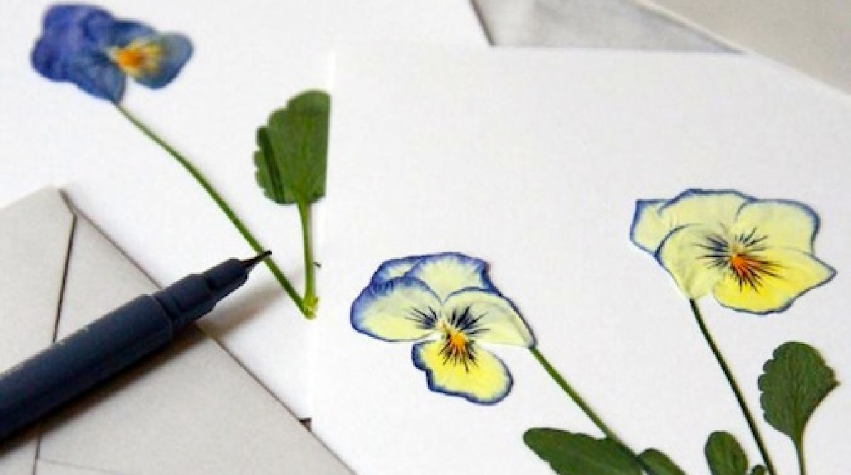 How-To: Press Violets to Make Botanical Art