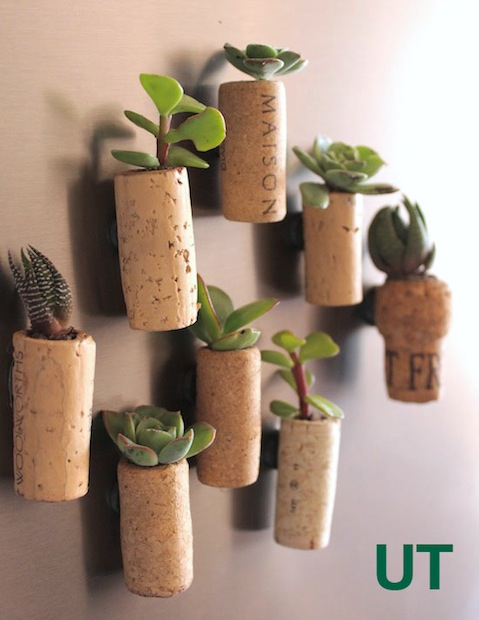 How-To: Magnetic Cork Planters