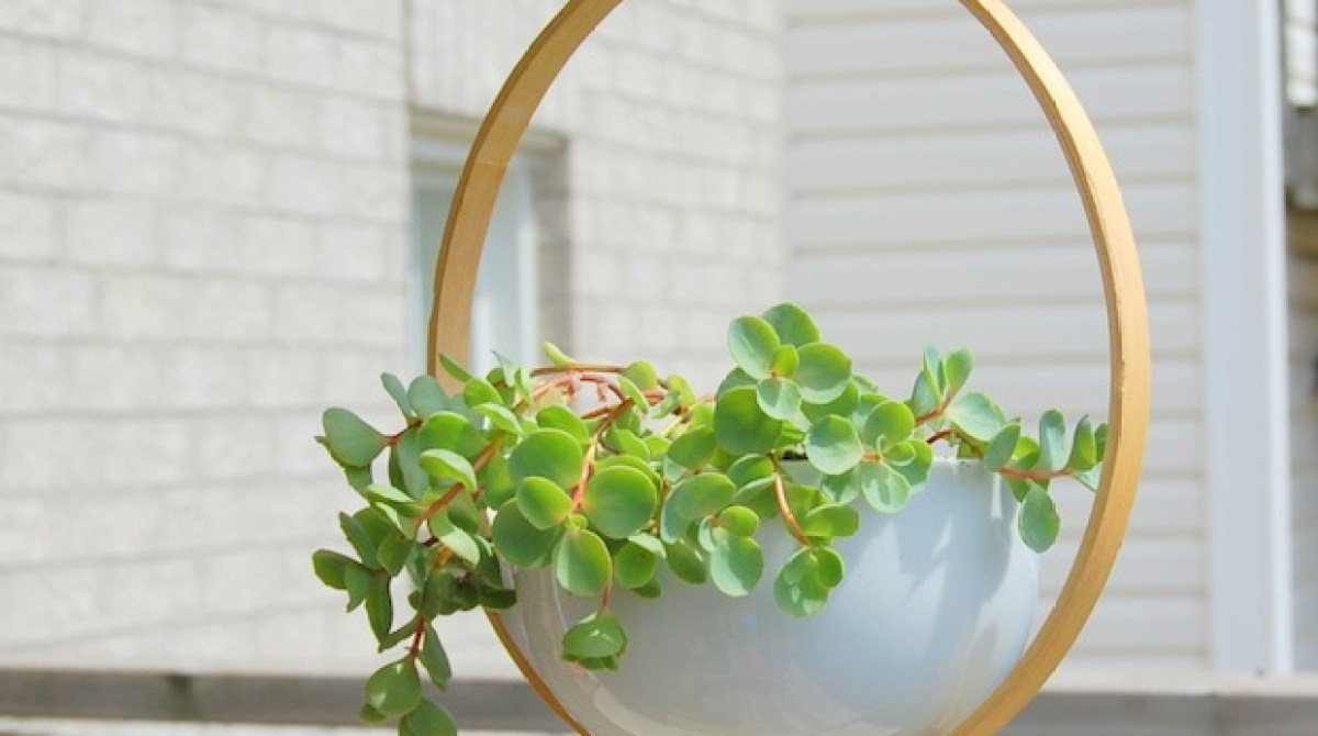 How-To: Modern Embroidery Hoop Hanging Planter