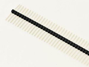 Male, 40-pin dual breakaway