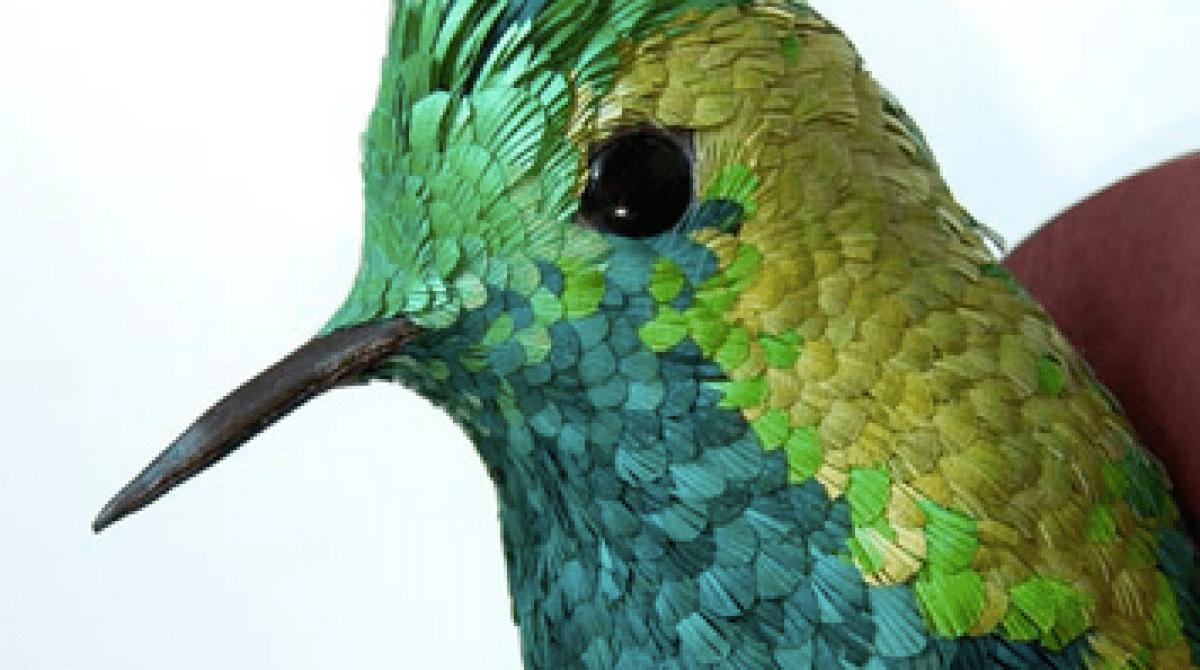 Hyperrealistic Hummingbird Sculptures From Paper Make