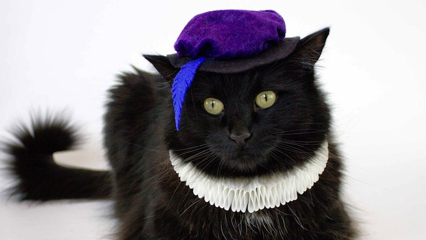 How-To: Cat Renaissance Costume