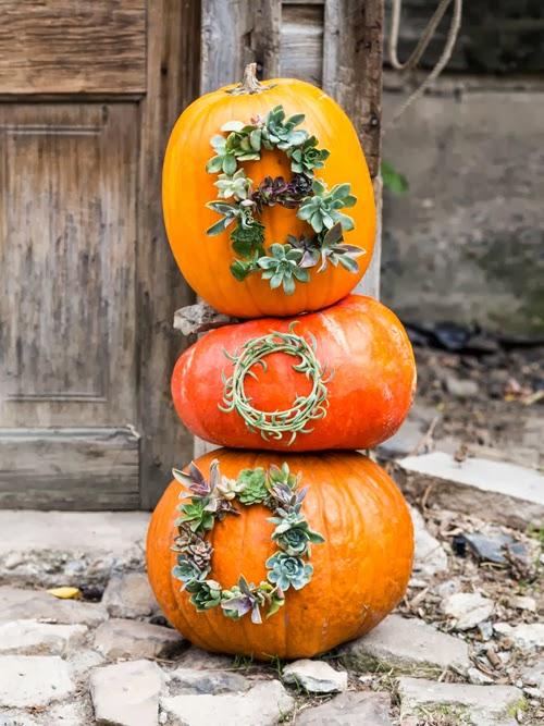 Halloween Inspiration: Succulent Worded Pumpkins