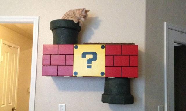 Homemade Super Mario Bros Cat Climber
