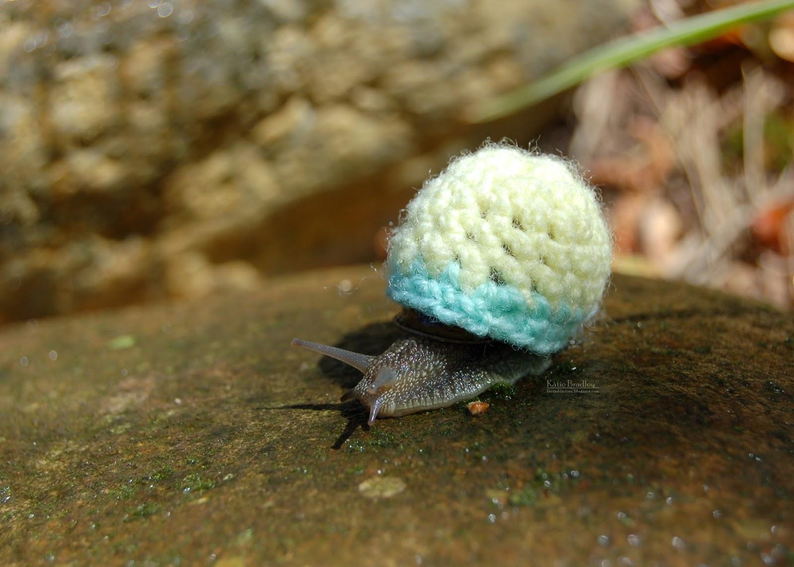 Crocheted Snail Cozy