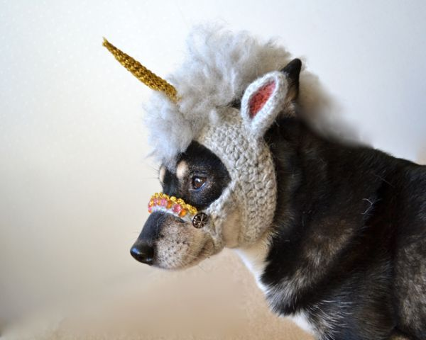 A Crocheted Unicorn Mask for a Dog