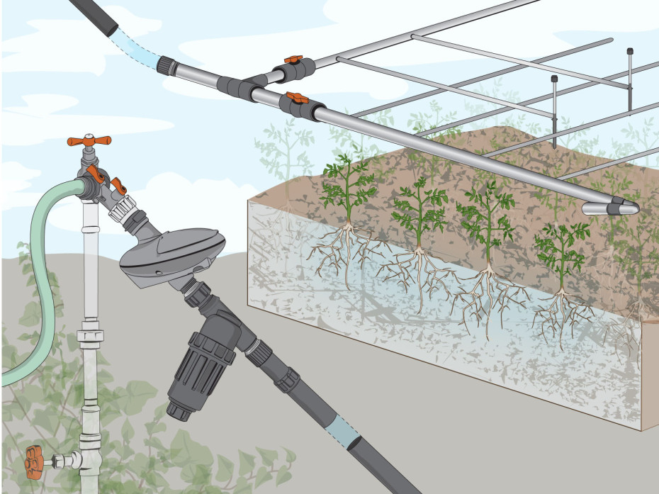 Drip Irrigation Basics