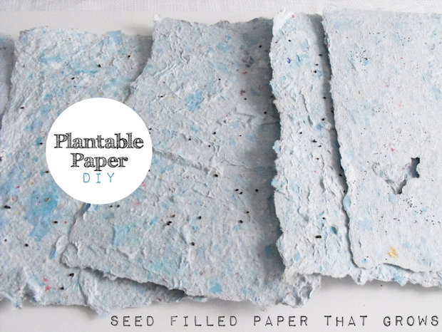 How-To: Plantable Wildflower or Herb Paper