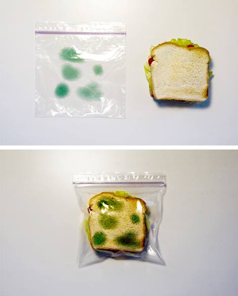 How-To: Anti-Theft Lunch Bags