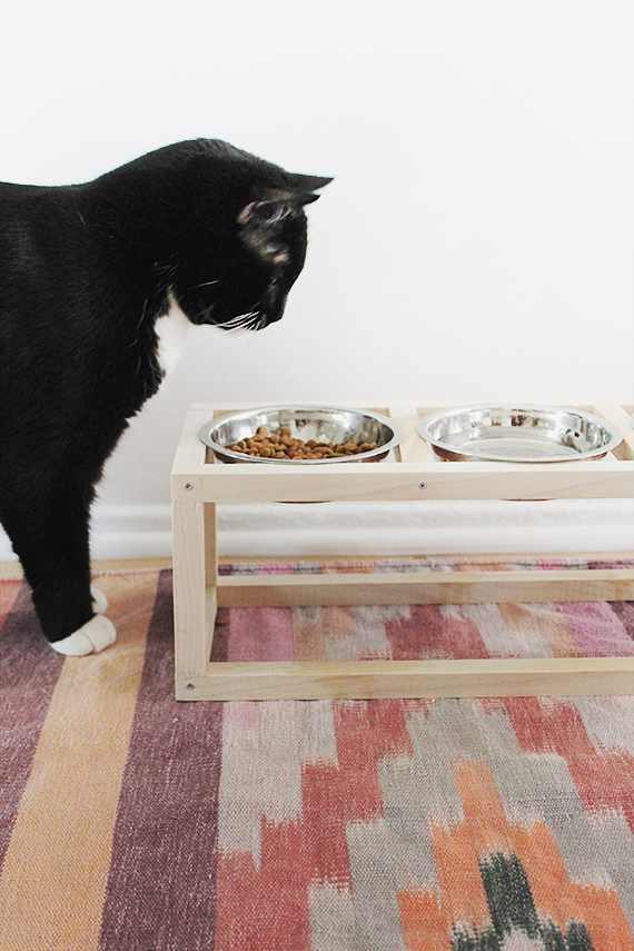 How-To: Modern Wooden Pet Bowl Stand