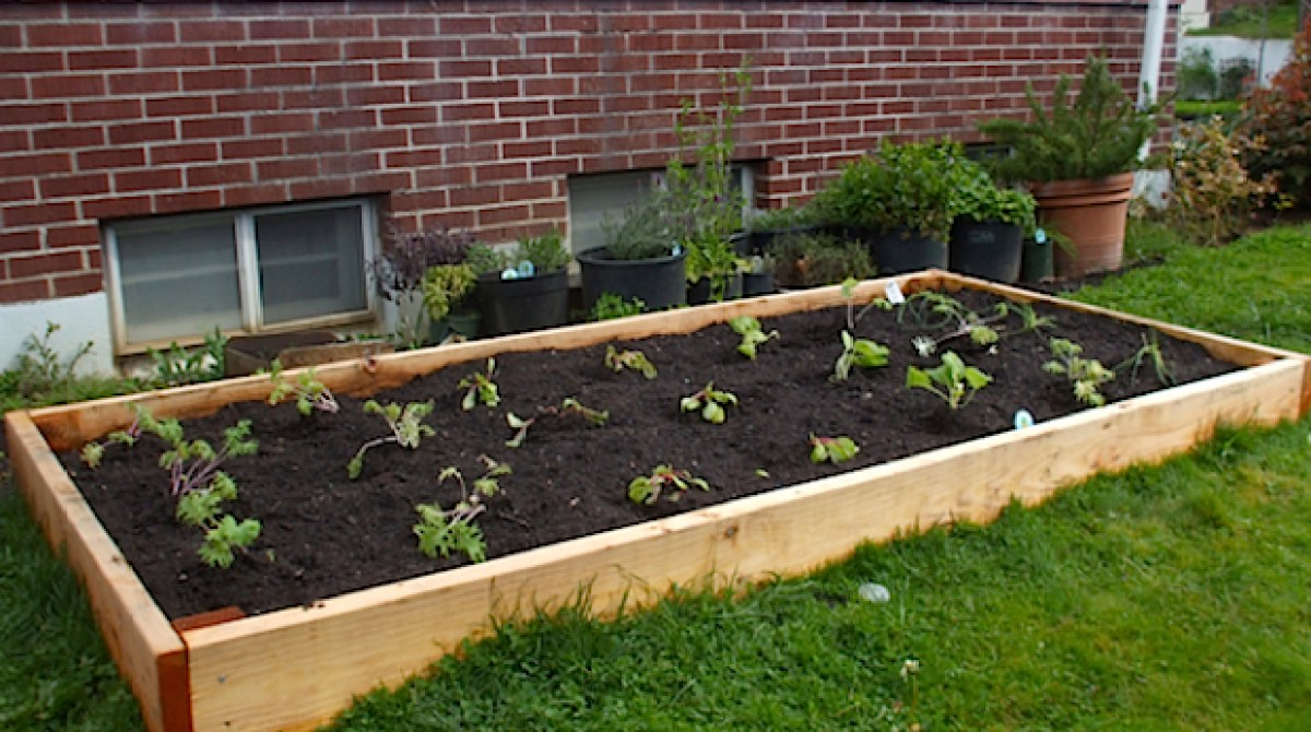 Flashback: Build Your Own Raised Garden Bed | Make: