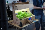 Automated Herbs