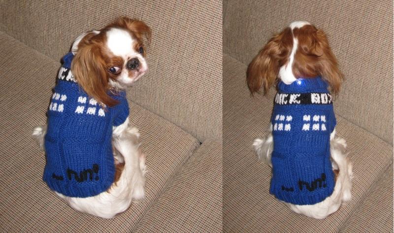 Flora-Powered TARDIS Dog Costume