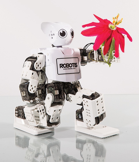 From The Gift Guide: Robots For Everyone!