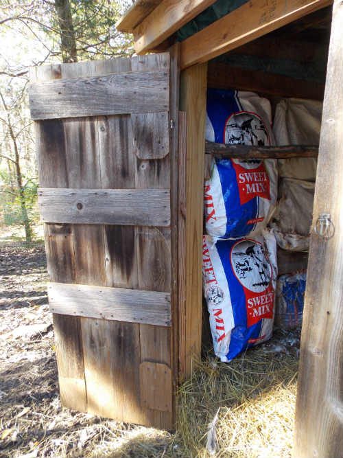 How-To: Insulate a Chicken Coop with Alpaca or Wool Roving
