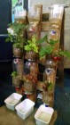 Hydroponic design by SAP Geniuses team. I so wanted to eat these strawberries!