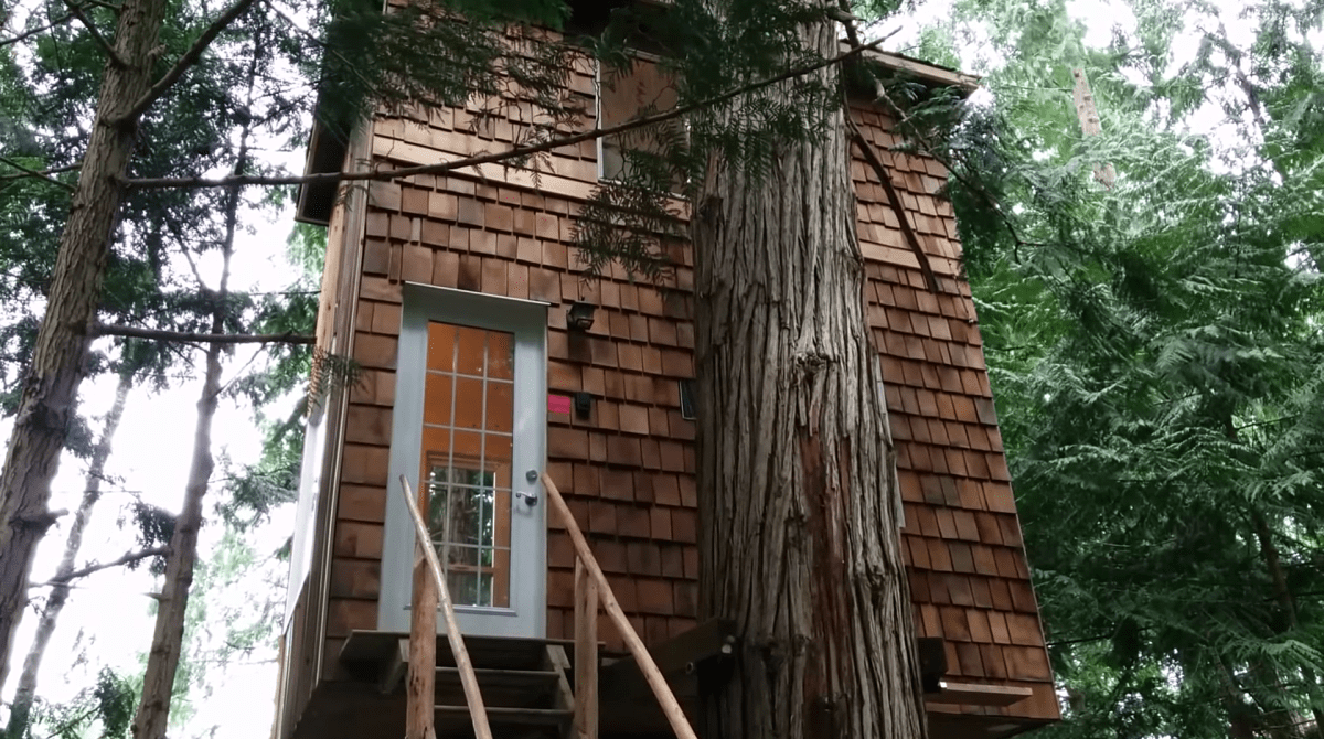 This Tiny Home Is a Grown-Up Treehouse