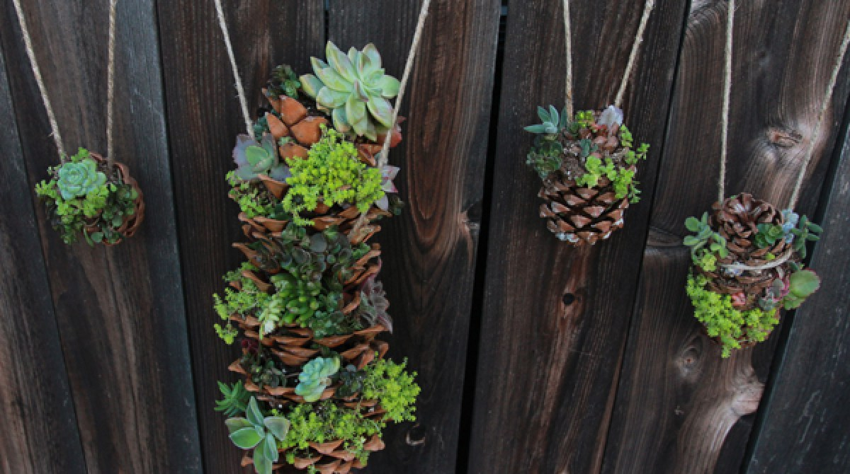 DIY Hanging Succulent Tower