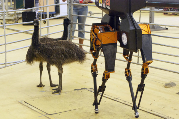 ADRIAS' bird-like leg design features lightweight materials and was inspired by ground walking birds such as the ostrich.