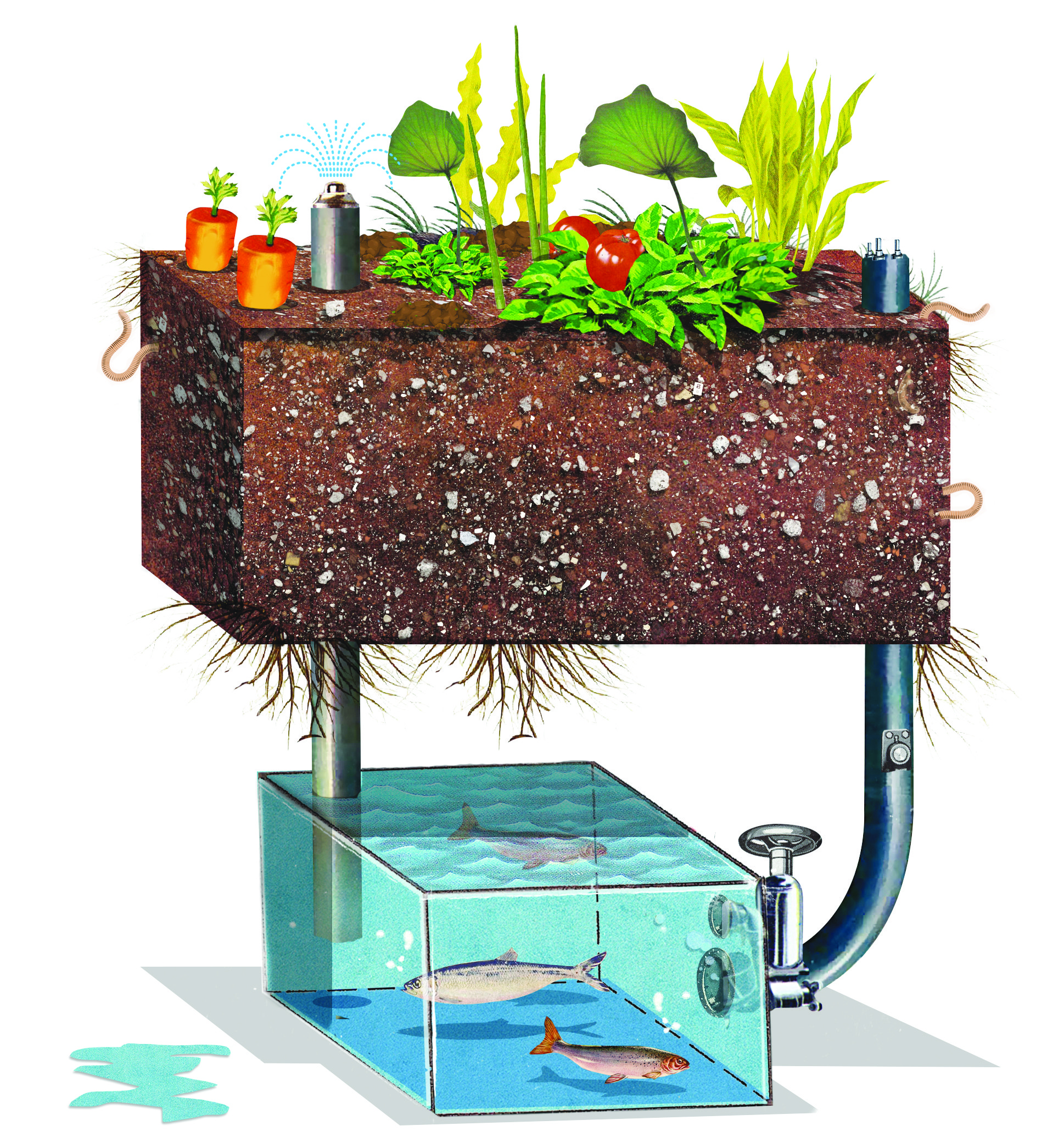 Build An Aquaponic Garden With Arduino Gardening Make Building A Backup Battery For Your Just Takes Little Bit Of