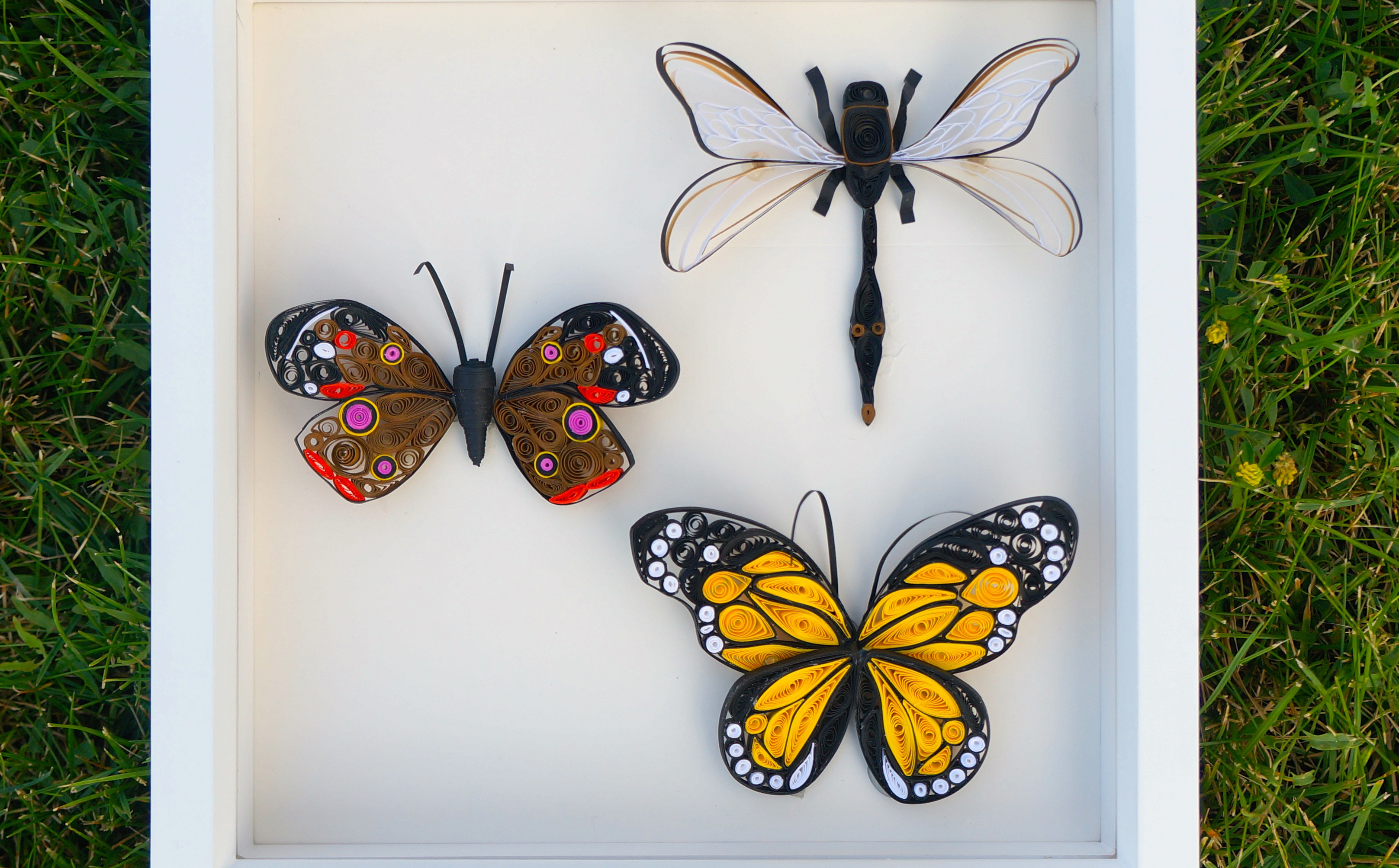 Paper Quilled Insects: Capture the Beauty, Not the Bugs