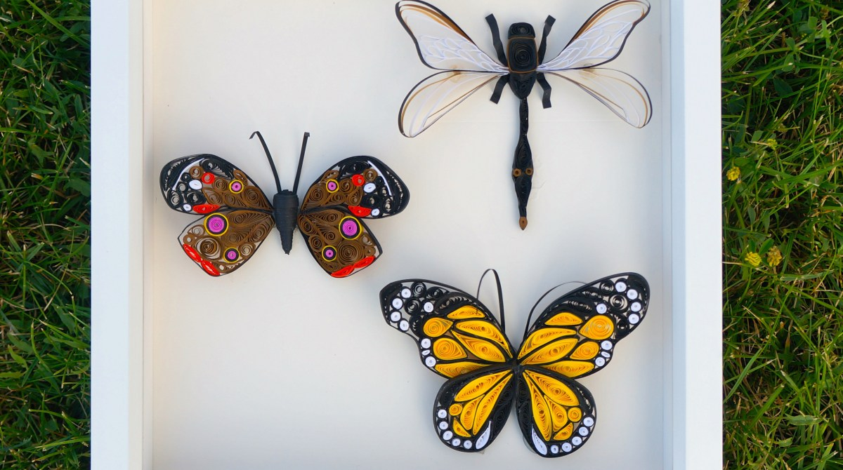 Paper Quilled Insects: Capture Beauty, Not Bugs   Make: for Quilling Butterfly Tutorial  199fiz