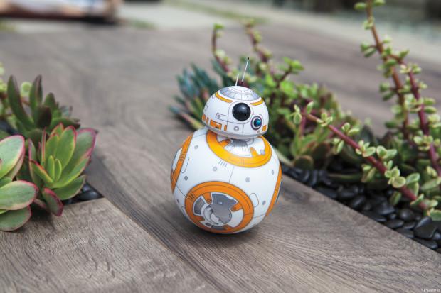BB-8 Toy Rolling in Garden