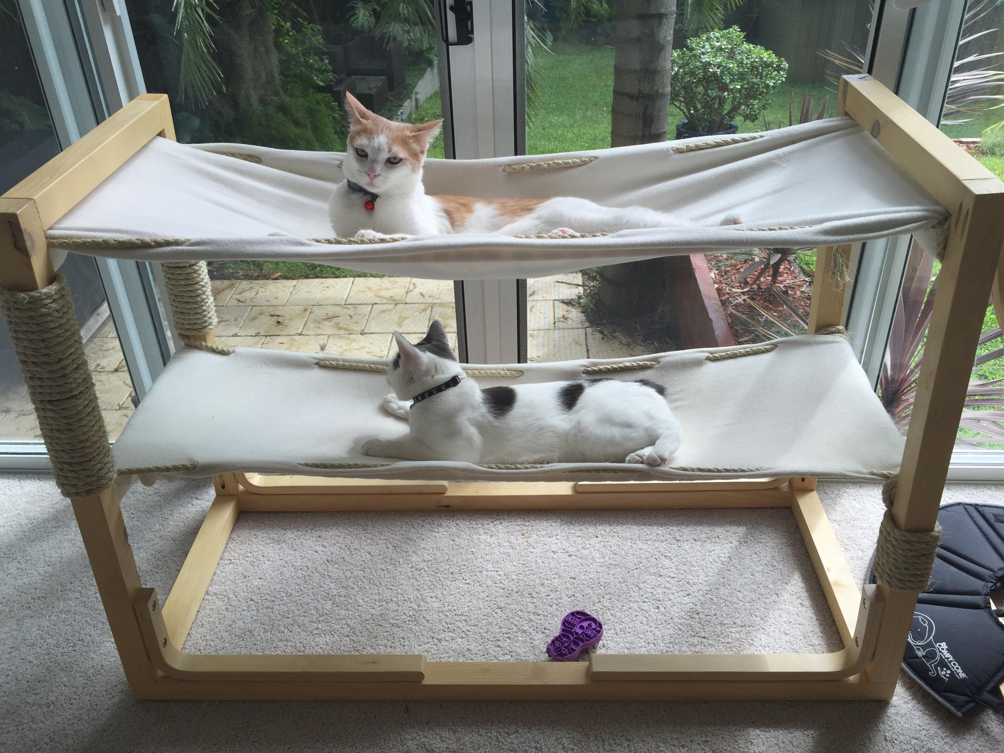 Build bunk bed hammocks for your cats make for Pet bunk bed gallery