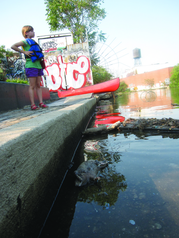 Gnarly_2012 29 June _Amara looking at 4 rat carcassses from Gowanus sewer overflows snagged at 2nd Street canoe dock_soft edges anyone_pic by Eymund Gowanus Dredgers