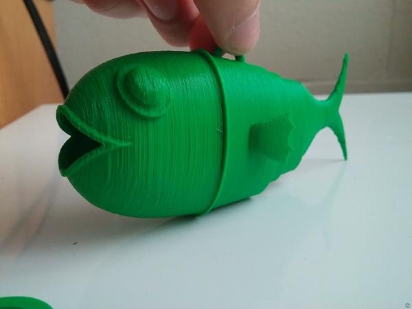 Telescoping Fish Ornament