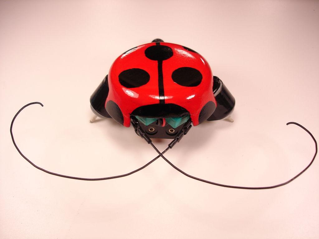 beetleBot_4