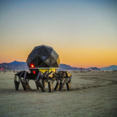 Tinspider-on-the-playa-500x500
