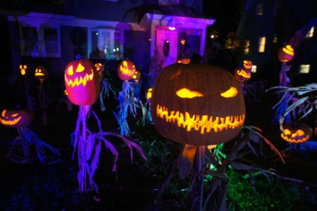 image from Ryan Hughes' Jack o Lantern Scarecrow