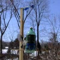 Make a Bird Activity Monitor and Feeder with Arduino