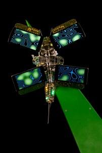O2_FULLRES_butterflies_00004
