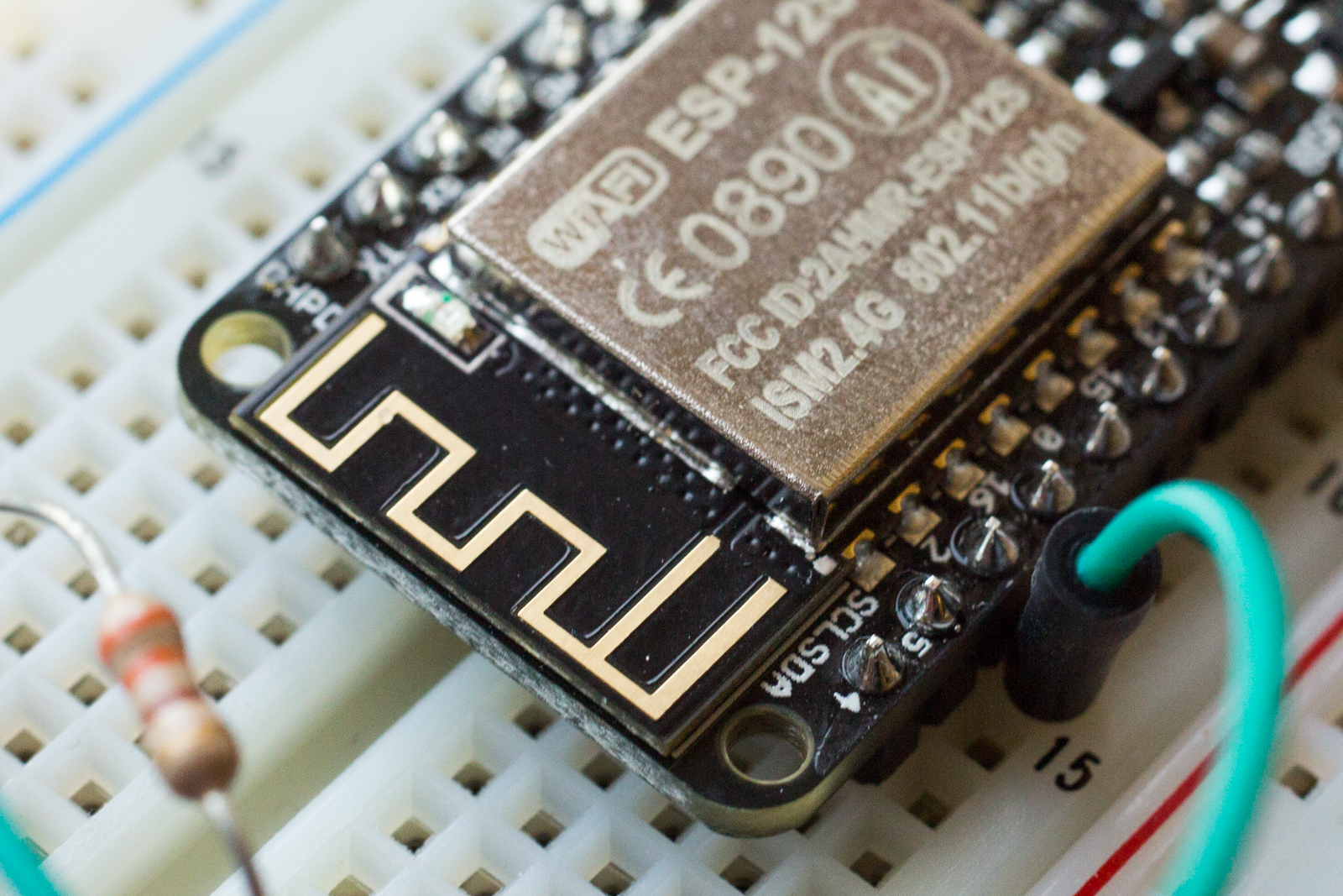 Close up photo of a radio antenna on a Adafruit Feather board.