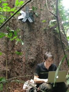 Topher White's devices detect the sounds of illegal logging. Photo courtesy of Rainforest Connection