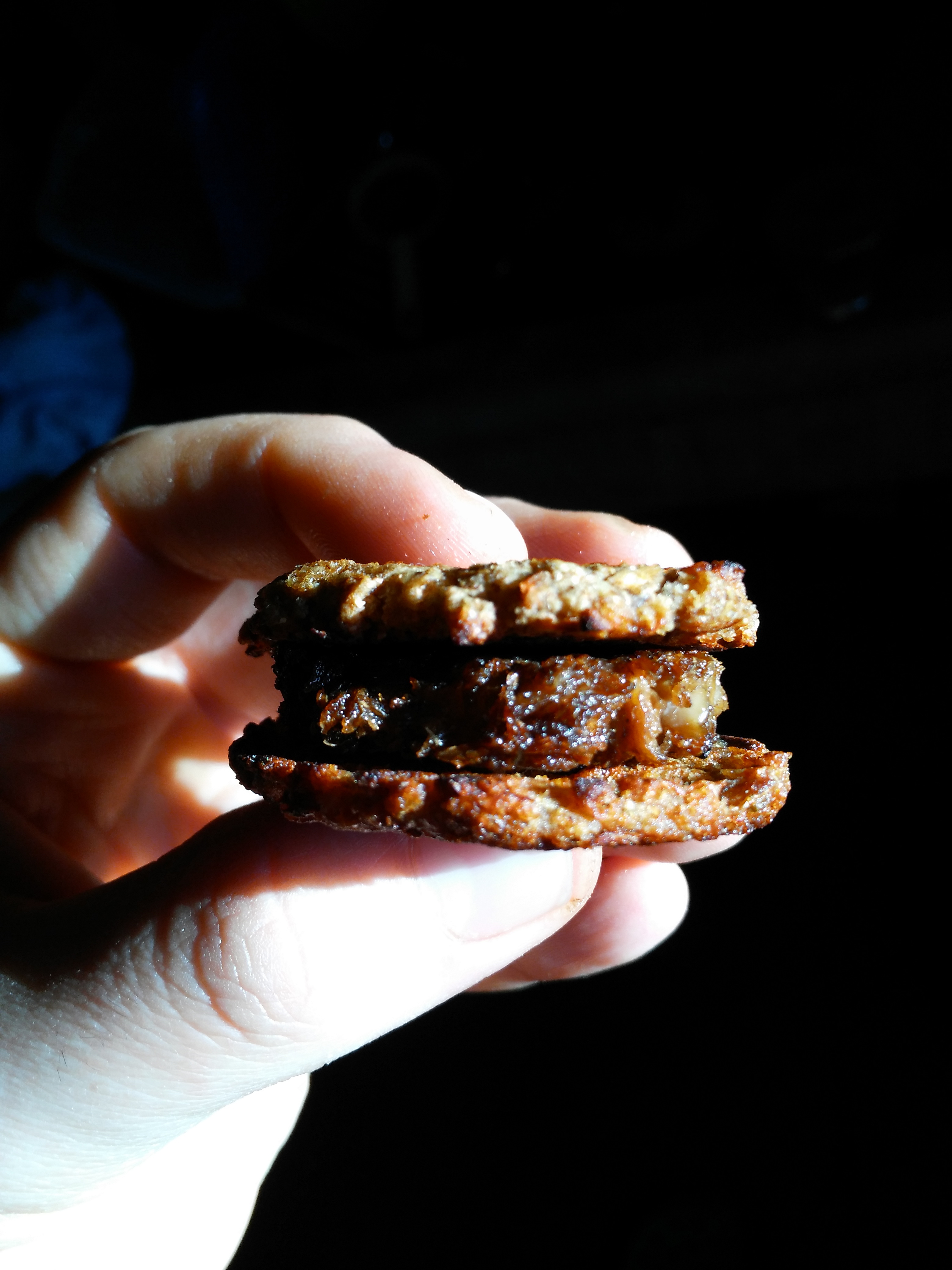 Edible Innovations: Growing Mushrooms from Coffee Grounds and Making them into Burgers